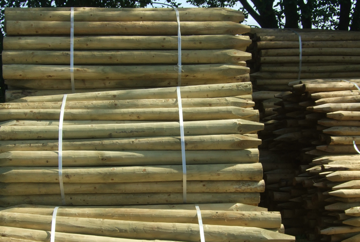 Stake Amp Rail Fencing Fencing Posts Herefordshire Clifford Jones Timber Rob Goddard