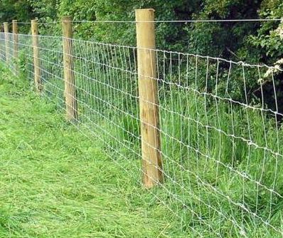 Fence Supplies Wire Fence Supplies
